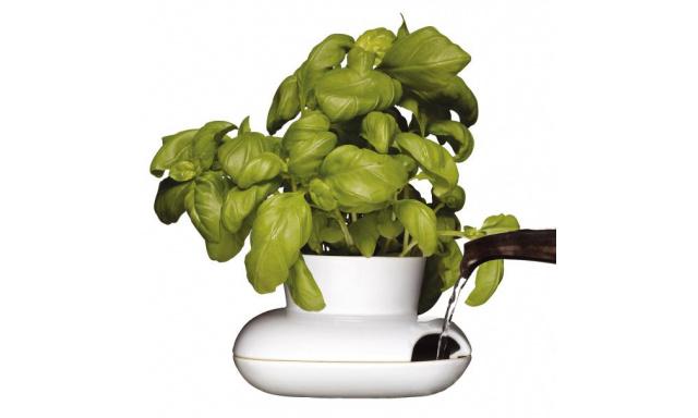 Kvetináč na bylinky SAGAFORM Herb, malý